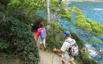Guided tour on Porquerolles island